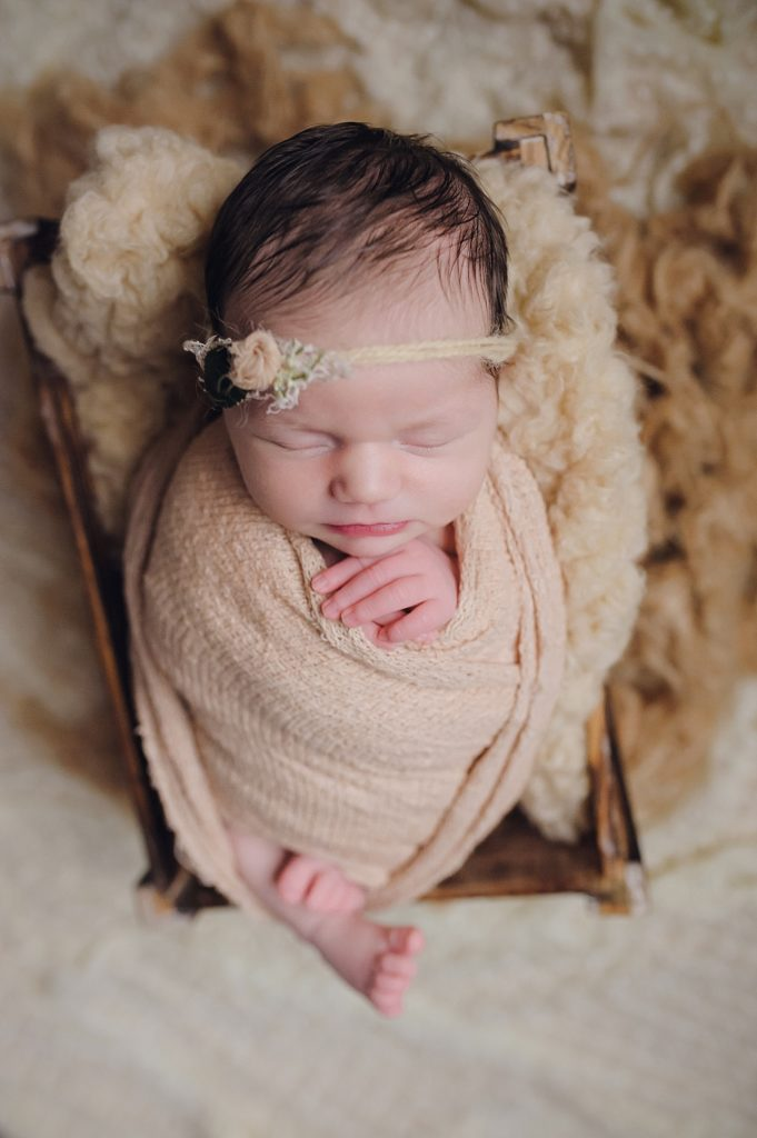 memphis tn newborn session